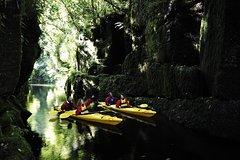 Imagen Scenic Lake McLaren Kayak Tour