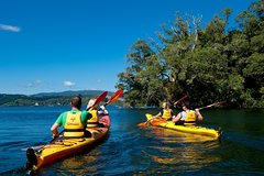 Imagen Lake Rotoiti Hot Pools and Glowworm Cave Kayak Tour from Rotorua