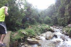 Imagen Private Tour: La Miel Magnificent Natural Reserve Hike