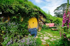 Imagen  Tauranga Shore Excursion: Lord of the Rings Hobbiton Movie Set Tour