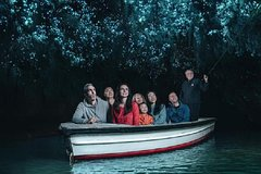 Imagen Private tour of Waitomo Caves for five persons