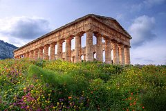 The best of the West Segesta, Erice, Trapani Saline, Full-Day Tour from Pal