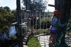 Imagen Trees Adventure - Tree Ropes & Zipline Experience