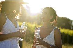 Imagen Hunter Valley Wine, Vodka, Liqueur & Chocolate Day Tour from Sydney