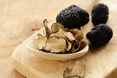 Tuscan Walk and Hunt for Truffles