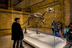 London United Kingdom Dinosaur Discovery: The Natural History Museum Family Tour 61537P2