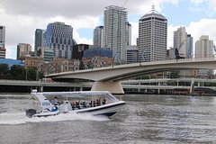 Brisbane River Koala Express Cruise To Lone Pine Koala Sanctuary