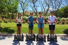 Imagen Valencia 3 Parks Segway Tour