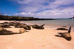 Imagen Escapada de un día a la isla de Santa Fe desde Puerto Ayora.