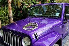 Imagen Half-Day Bay of Islands Private Jeep Art Safari
