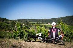 Classic Chianti Wine Region Bike Tour