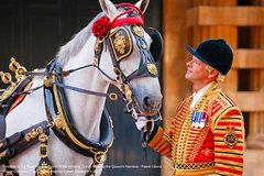 Imagen Royal Mews at Buckingham Palace and Changing the Guard