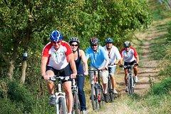 Ver la ciudad,Ver la ciudad,Visitas en bici,Excursión a Bosques de Viena