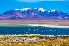 Ver la ciudad,Ver la ciudad,Ver la ciudad,Actividades,Visitas en autobús,Visitas en autobús,Tours de un día completo,Actividades de aventura,Salidas a la naturaleza,Excursión a Salar de Atacama