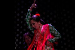 Imagen Tablao Flamenco Orillas de Triana