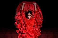 Imagen Flamenco Theatre Madrid tickets