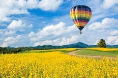 City tours,Excursions,Activities,Full-day excursions,Air activities,Adventure activities,