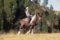 Imagen HORSEBACK RIDING CUSCO: MYSTIC TOUR FULL SERVICE