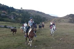 Imagen CUSCO DAY TOUR HORSE RIDING 4 ARCHAEOLOGICAL SITES