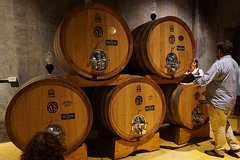 Amarone Wine-Tasting Tour from Verona