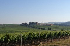 Monteriggioni and Castellina In Chianti bike tour