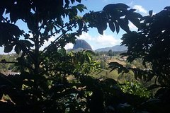 Imagen Guatape Rock Tour and a Coffee farm, all in one great day