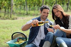 Imagen Hunter Valley Food and Wine Tasting Day Tour from Sydney