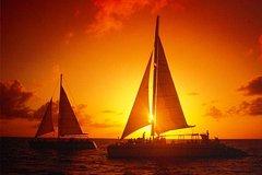 Actividades,Actividades,Gastronomía,Actividades acuáticas,Actividades acuáticas,Otros gastronomía,Tour por Isla de Aruba