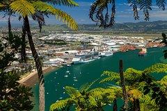 Imagen Tauranga Shore Excursion: Mt Drury and Moturiki Island Walking Tour including Mount Hot Pools Admission