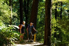 Imagen Self-Guided Queen Charlotte Track Walk from Picton