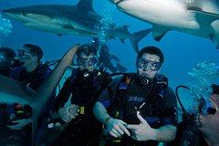 Activities,Adventure activities,Adrenalin rush,Scuba Diving