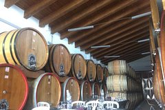 City tours,Gastronomy,Gastronomic tours,Oenological tours,Excursion to Mount Etna