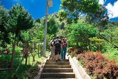 Imagen Medellin trekking, Path of Life and Pan de Azucar hill