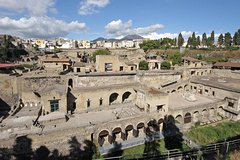 Herculaneum - PRIVATE TOUR