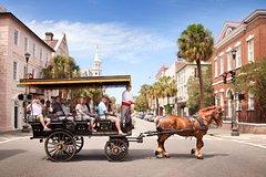 Ver la ciudad,Ver la ciudad,Visitas en otros vehículos,Tours temáticos,Tours históricos y culturales,
