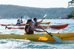 Imagen Pittwater Discovery Kayaking Tour
