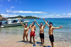 Imagen Bay of Islands Cruise & Island Tour - Snorkel, Hike, Swim, Paddleboard, Wildlife