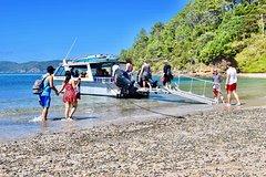 Imagen Afternoon Cruise & Island Tour - Scenic Cruise, Hike, Snorkel, Wildlife,