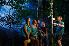 Imagen Daintree Rainforest Night Walk from Cape Tribulation