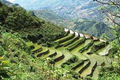 Ver la ciudad,Salir de la ciudad,Actividades,Tours con guía privado,Excursiones de más de un día,Salidas a la naturaleza,Especiales,Tour por Hanói,Excursión a Sapa