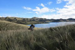 Imagen 6-Day Trekking Cliffs and Piñan Lagoon from Quito