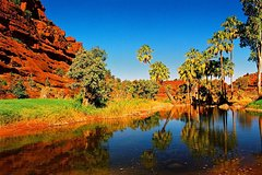 Imagen Palm Valley 4WD Day Tour