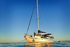 Imagen Coral Sea Dreaming: Overnight Dive, Snorkel and Sail Experience from Cairns