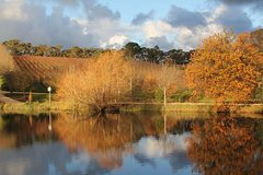 Small-Group Fleurieu Peninsula Food and Wine Experience by 4WD Including 3-Course Lunch