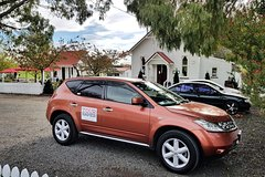 Imagen Private Personalized Car Tour of Napier with Guide
