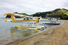 Imagen Scenic Flights Over Hauraki Gulf including Man O' War Wine Tasting Tour