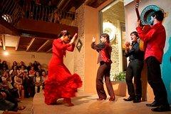 Imagen Flamenco Show at Casa de la Memoria Admission Ticket