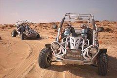 Activities,Activities,Water activities,Adventure activities,Adrenalin rush,