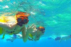 Actividades,Actividades,Actividades,Actividades acuáticas,Actividades acuáticas,Actividades acuáticas,Deporte,Deporte,