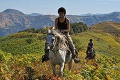 Imagen Balkan Horse Riding - Glozhene Monastery Ride